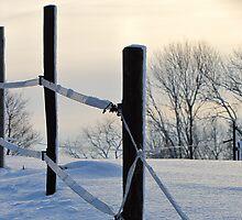 Winterscene by Hans Bax