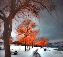A Winter Mood by Tara  Turner
