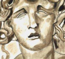 Head Of Meduse - 1630, Gian Lorenzo Bernini Sticker