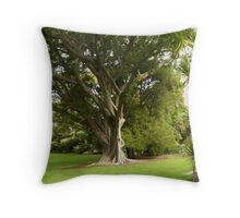 Light & Shade, Botanic Gardens, CBD Adelaide. Throw Pillow