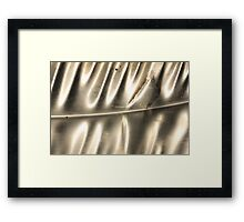 Shining Silver on Slide Framed Print