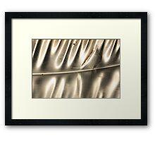 Shining Silver on Slide Framed Print