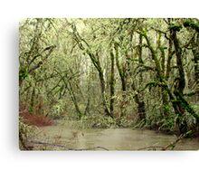 Forest Flood Canvas Print