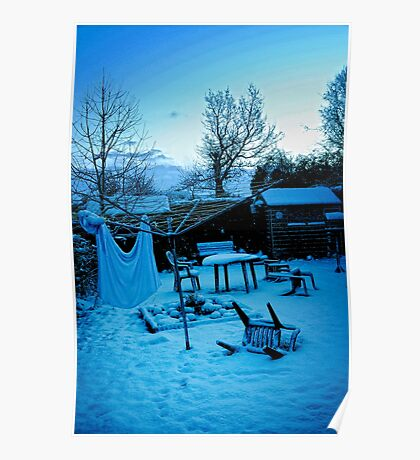 Winter in my back garden Poster