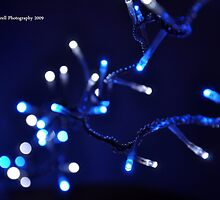 Blue & White Christmas by Kevin Cotterell