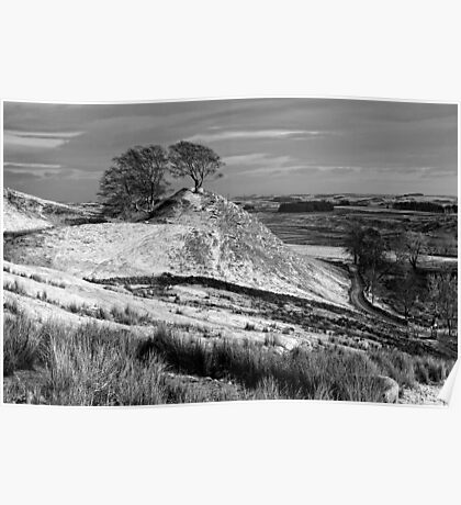 Northumberland Landscape, Northern England Poster