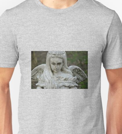 STONE WINGS Unisex T-Shirt