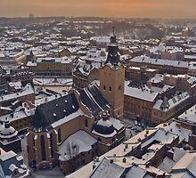 Winter Evening by Oleksii Rybakov