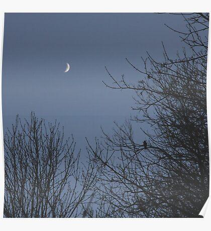 Moon struck Poster