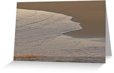 White over sand by BaZZuKa
