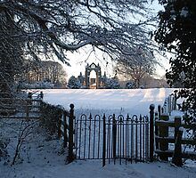 Gisborough Priory by dougie1page2