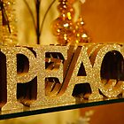 Peace on Earth by Mary Campbell