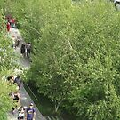 Aerial View of High Line from Whitney Museum, New York City by lenspiro