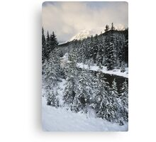 Unknown Mountain, Jasper National Park Canvas Print