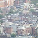 Aerial View of Hoboken, New Jersey  by lenspiro