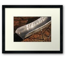 Shiny Slide Framed Print