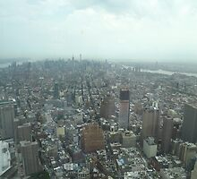 Aerial View of Lower Manhattan, Midtown Manhattan, View from One World Observatory, World Trade Center Observation Deck by lenspiro