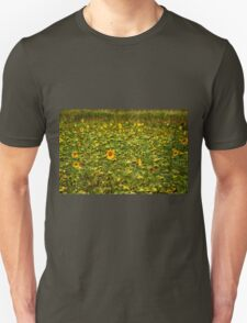 Sun Flower Field T-Shirt