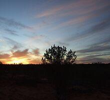 Thargomindah sunset, Thargomindah, QLD by Caroline Crawford