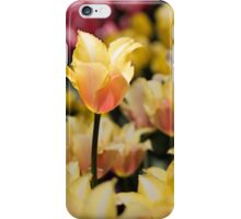 Yellow and Pink iPhone Case/Skin
