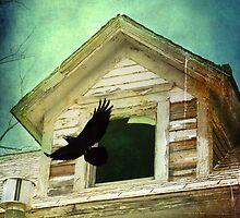 Freedom by Tia Allor-Bailey