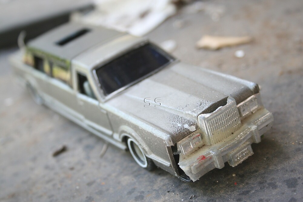 Abandoned Car in my Backyard by Seone Harris-Nair