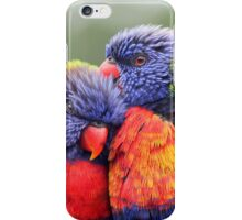Canoodling in the Mist iPhone Case/Skin