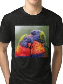Canoodling in the Mist Tri-blend T-Shirt