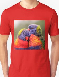 Canoodling in the Mist T-Shirt