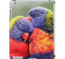 Canoodling in the Mist iPad Case/Skin