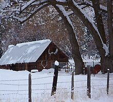The Old Barn by © Betty E Duncan ~ Blue Mountain Blessings Photography