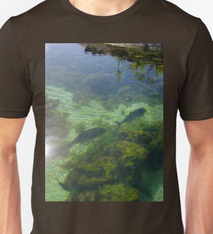 a vast Palau landscape Unisex T-Shirt