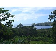 a desolate Palau landscape Photographic Print