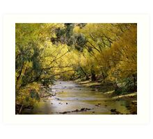 riverside by autumn Art Print
