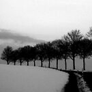 Winter avenue by Lena Weiss