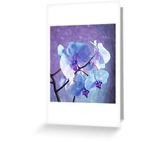 Blue Orchid-Art Prints-Mugs,Cases,Duvets,T Shirts,Stickers,etc Greeting Card