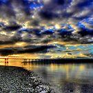 Hood Canal Bridge ~ Port Townsend, WA ~ HDR Series  by lanebrain photography