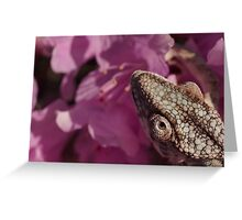 A Panther Chameleon Greeting Card