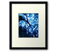 Composition in Blue With Subtle Touches of Green: Abstracted Branches and Sky Framed Print
