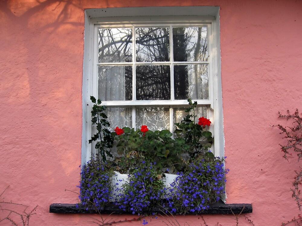 Bunratty Folk Park window by John Quinn