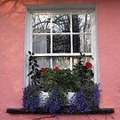 Bunratty Folk Park window by John Quinn