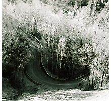 Smoky Mountain Road Photographic Print