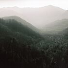 Rocky top Smoky Mountains by AlcornImages