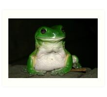 Green Tree Frog - (Litoria caerulea) Art Print