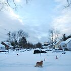 Suburban Winter 2009 by Jeff Stroud