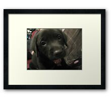 haa? what you saying to meh? Framed Print