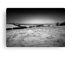 Frosty dawn tracks BW Canvas Print