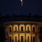 The White House, Washington, D.C. -- Night by CG1977