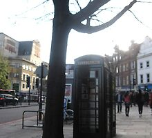 Tree and Telephone box in London by mollycool12