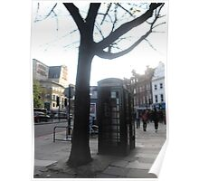 Tree and Telephone box in London Poster